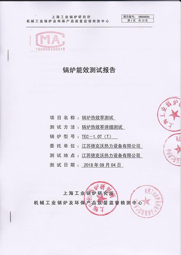 锅炉能效测试报告(TEC-1.0T)